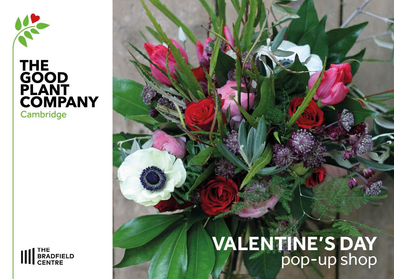 The Good Plant Company - Valentines pop-up p1
