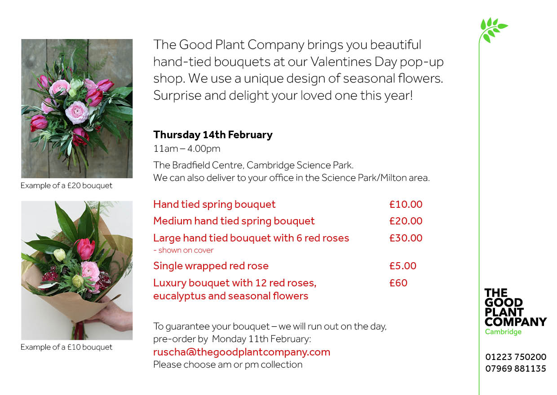 The Good Plant Company - Valentines pop-up p2